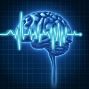 brein onderzoek